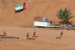Four falcons stand at their training post with a UAE Flag in the background stock photos