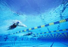Four female professional participants racing in pool Royalty Free Stock Photography