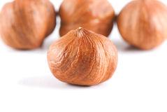 Four filbert nuts Royalty Free Stock Photography