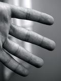 Four fingers. Of humans' hand Stock Images