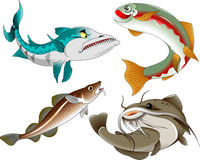 Four fish Royalty Free Stock Images