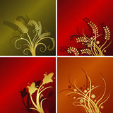 Four floral backgrounds. Set of four floral backgrounds with space for text, vector format available stock illustration