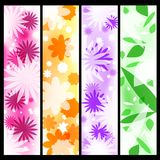 Four floral banners Royalty Free Stock Photos