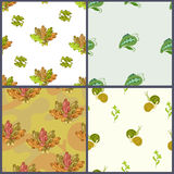 Four floral pattern. With acorn and peas vector illustration