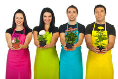 Four Florist Workers Showing Plants Royalty Free Stock Photos
