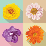 Four flowers, vector illustration Stock Images