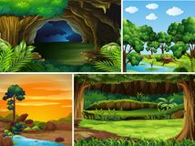 Four forest scenes at different time of day Stock Images