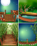 Four forest scenes at night time. Illustration Royalty Free Stock Images
