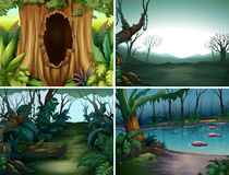 Four forest scenes with trees and river Royalty Free Stock Image