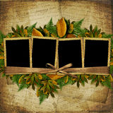 Four frame with ribbons and bow to old photos Royalty Free Stock Photography