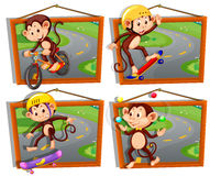 Four frames of monkeys playing sports Stock Image
