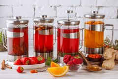 Four french presses. With a author tea and fruits on light Stock Image