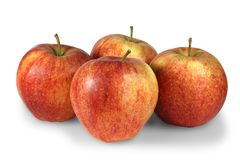 Four fresh apples. Four ripe red apples isolated on a white background Stock Images