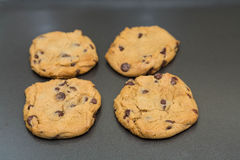 Four Fresh Baked Chocolate Chip Cookie Royalty Free Stock Image