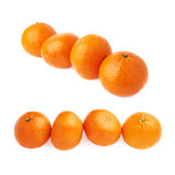 Four fresh juicy tangerines fruits composition isolated over the white background Stock Photography