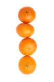Four fresh juicy tangerines fruits composition isolated over the white background Stock Image