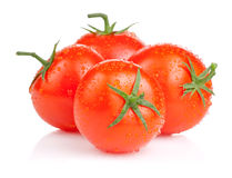Four fresh juicy tomato with water droplets Royalty Free Stock Image