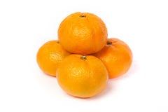 Four fresh mandarin isolated on white Royalty Free Stock Image