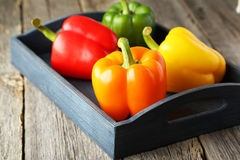 Four fresh pepper in blue tray on the grey wooden background Stock Photos