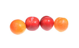 Four fresh plums. Isolated on a white background Stock Photo