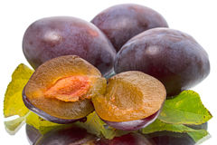 Four fresh plums on white Stock Photography