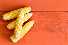Four fresh sweet corn on the cob on orange Stock Image