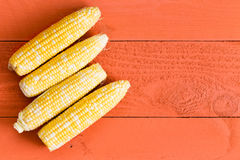Four fresh sweet corn cobs on an orange table. Four fresh sweet corn cobs arranged in a row as a left side border on an orange wooden table with copy space Stock Image