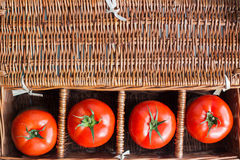 Four fresh tomatoes. In wicker retro box royalty free stock photos