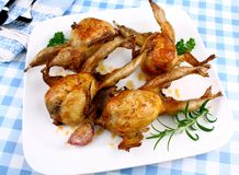 Four fried quail with gravy, garlic and rosemary, top view Royalty Free Stock Images