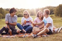 Four friendly youngsters spend free time outdoor, sit on plaid, have pleasant talk, drink cider, have pleasant smiles. Two coulpes. Have picnic outside Stock Images