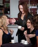 Four Friends Laughing. Foursome of young cute teen friends laughing at a cafe Royalty Free Stock Images