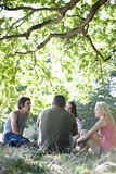 Four friends sitting on the grass Royalty Free Stock Photo