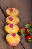 Four Fruit muffins in a row Stock Images