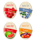 Four fruit, vegetables and berries labels. Royalty Free Stock Photography