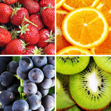 Four fruits Royalty Free Stock Photo