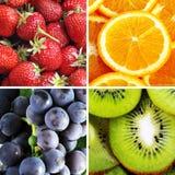 Four fruits Royalty Free Stock Photo