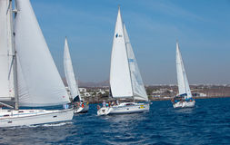 Four fully crewed yachts out sailing Royalty Free Stock Photos