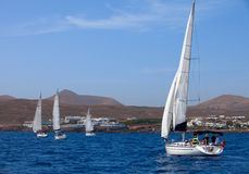 Four fully crewed yachts out sailing Royalty Free Stock Photography