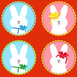 Four funny rabbits in round frameworks Royalty Free Stock Images