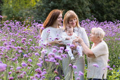 Four generations of women in a beautiful lavender field. On summer day royalty free stock images