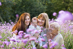 Four generations of women in a beautiful lavender field. On summer day Stock Photos