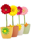 Four Gerberas Stock Images