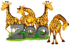 Four giraffes in the zoo. Illustration Stock Photography