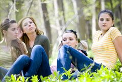 Four Girls in Forest. Four young adult females sit relaxed in a wooded forest setting Stock Images