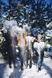 Four girls have fun in the forest in winter Stock Image