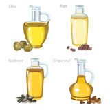 Four glass bottles with oil and oilseeds in front of them. Bottles with olive oil, rape oil, sunflower oil and grape seeds oil Royalty Free Stock Image