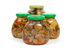 Four glass jars with marinated mushrooms Royalty Free Stock Photos