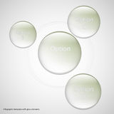 Four glass rings template with light background Stock Photos