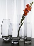 Four Glass Vases. Glass vases on table with white curtain and red flower Royalty Free Stock Photos