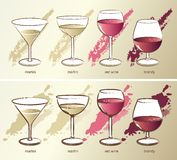 Four glasses, vector Royalty Free Stock Photos